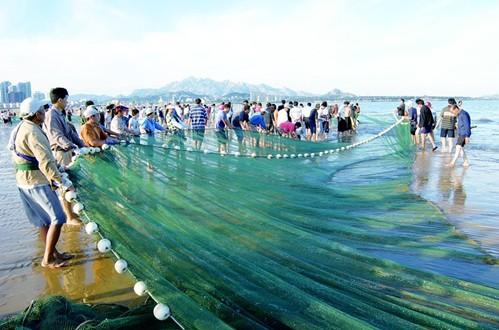 灵山湾作为青岛西海岸最大的优质海水浴场和最长的美丽沙滩,于今年三