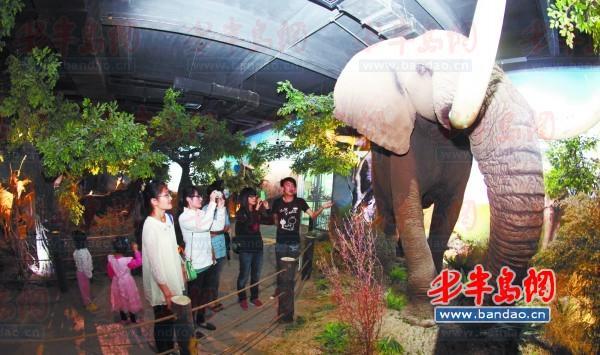 据悉,青岛滨海学院世界动物标本艺术馆是国家aaa级旅游景区,山东省三