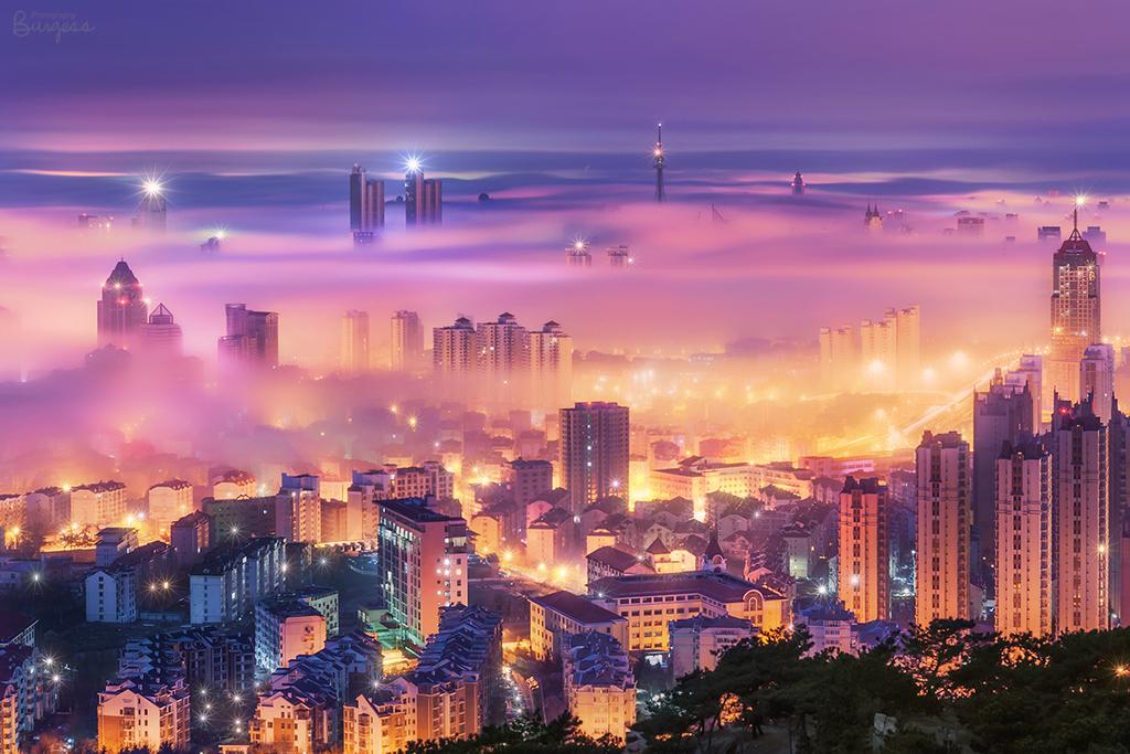 青岛平流雾-青岛西海岸新闻网