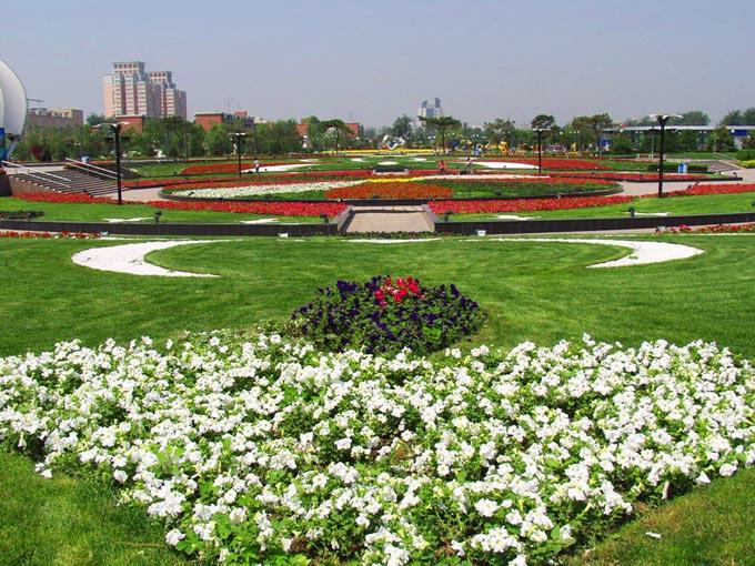 胶州三里河公园图片