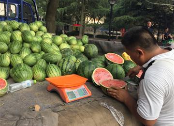 青岛菜价比上月涨了近10% 西瓜价格有下降空间