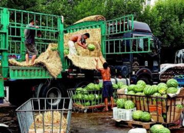 西瓜市场生意火爆 揭青岛西瓜上市时间表