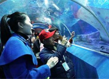 青岛旅游惠民月邀村民看美景