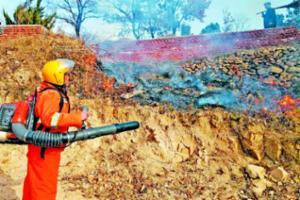 大村镇焚烧山林防火隔离带2600多亩