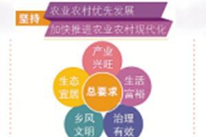 """十九大报告解读·中国经济新征程 乡村振兴:""""三农""""发展金钥匙"""