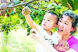 田园宝山生态美 蓝莓小镇产业兴——专访宝山镇党委书记王宝忠