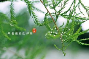 """19日迎来""""雨水"""",山东部分地区有零星小雨雪"""