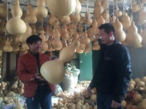 聊城小村卖葫芦一年卖六个亿,大年三十还在忙发货