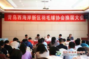 新区羽毛球协会换届大会在古镇口军民文化体育馆举行