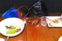 顾客就餐老鼠从天而降 网友称多次发现老鼠