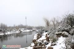 南辛安河撩开雪景面纱