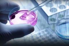 绝症患者可使用未获批药物