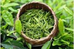 常喝绿茶好处多 还能减少脱发!