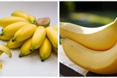 芭蕉和香蕉啥區別