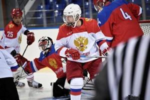 """普京又要""""秀技能"""" 将在索契参加夜间冰球比赛"""