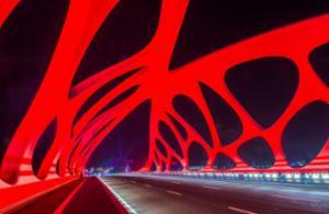 珊瑚贝桥五光十色之美
