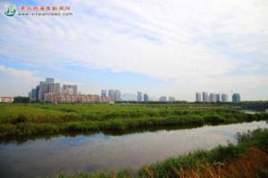 风河湿地生态美