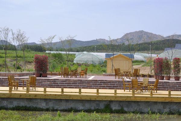藏马山生态观光园-青岛西海岸新闻网