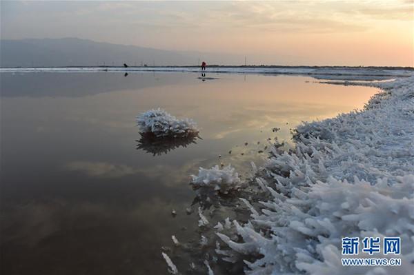 这是山西运城盐湖的硝凇景观(1月19日摄)。 近日,受持续低温影响,位于山西省南部的运城盐湖出现硝凇景观。据了解,硝凇是芒硝的结晶体,当温度下降到一定程度时,盐湖水中的芒硝便会结晶而出,形成硝凇。运城盐湖是世界三大硫酸钠型内陆盐湖之一。由于其盐含量类似中东的死海,人在水中可以漂浮不沉,故被誉为中国死海。(詹彦)