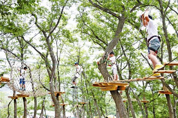 """日前,青岛森林野生动物世界""""快乐猴·丛林穿越""""项目正式开启,首批参加"""