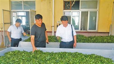乡村振兴工作队来了 村里产业致富路宽了 2.jpg