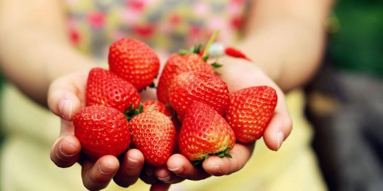 """不管是洗葡萄還是草莓,水里加點""""便宜貨"""",臟東西自己跑出來! _歐洲杯彩票app"""